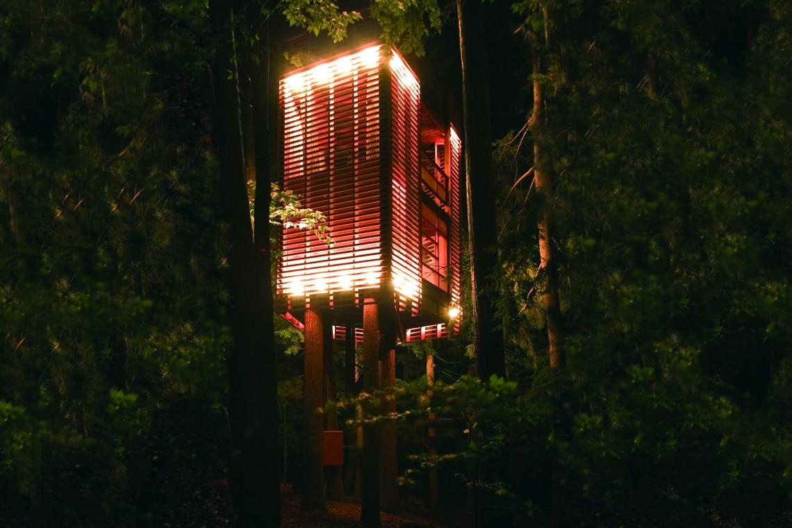 Domy na drzewie i nie tylko. Zobacz projekty pracowni Four O NIne i przyjdź na wykład