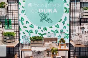 Odnowiony i tonący w zieleni salon Duka w Arkadii