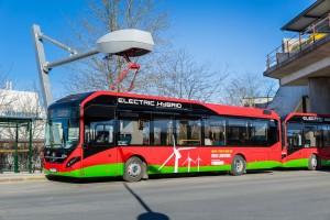 Więcej elektrycznych autobusów w Poznaniu. Miasto ogłosiło przetarg
