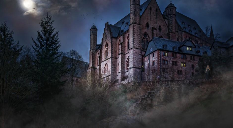 Bajkowy zamek uratowany od ruiny, dzięki internautom