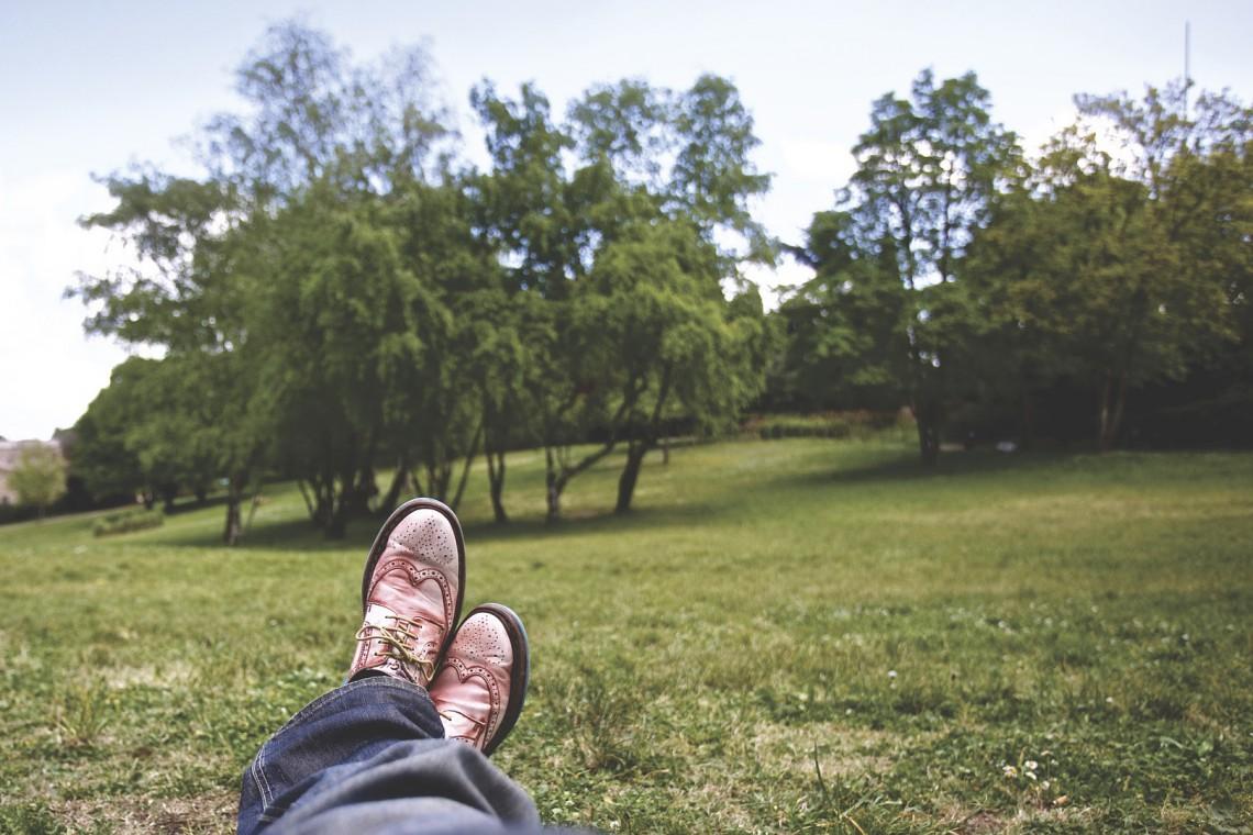 Bytom chce odnowić pięć parków i trzy zieleńce