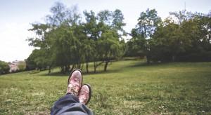 Unijne miliony odmienią radomskie parki