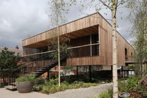 Uzdrawiająca moc drewna. Pierwszy na świecie budynek wzniesiony z...