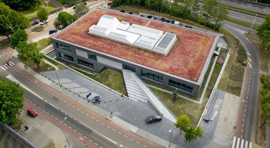 Zielone dachy nie tylko pięknie wyglądają