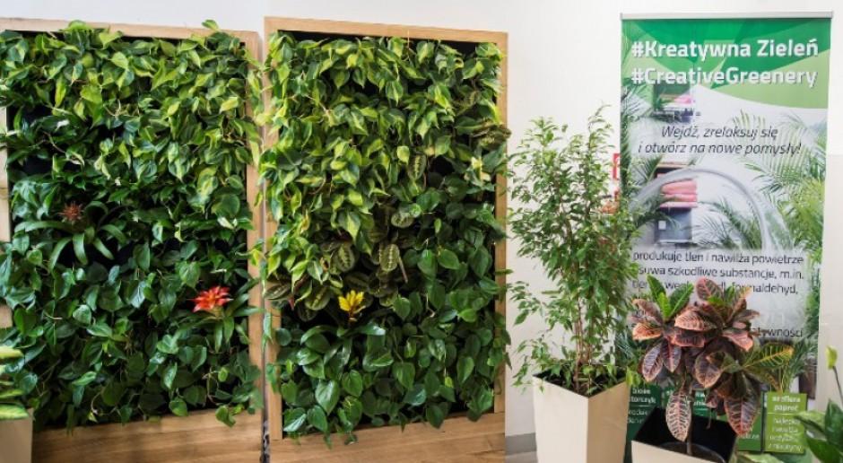 Oaza zieleni w Centrum Kreatywności na Targowej