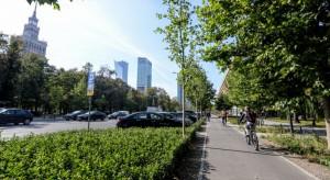 Zazieleniła się ulica Świętokrzyska w Warszawie