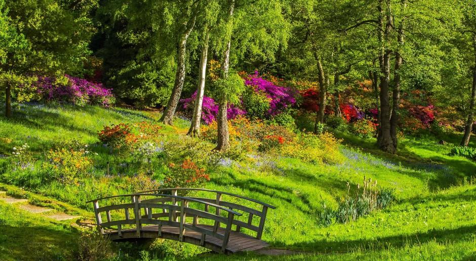 Ambitne plany renowacji parku Wirtembergów w Pokoju. Jest dotacja