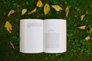 Międzynarodowy konkurs na projekt ilustrowanej książki dla dzieci