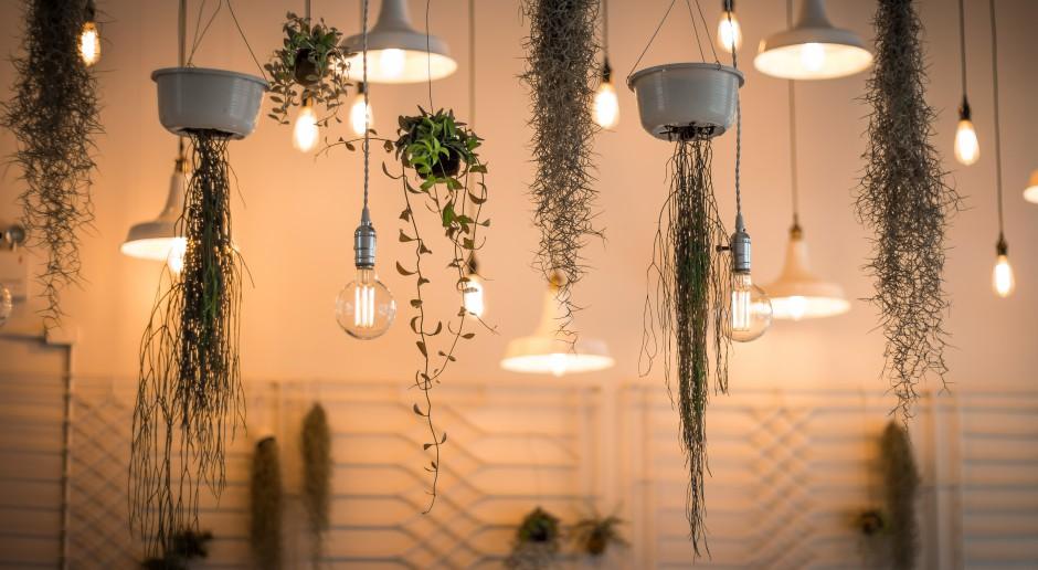 Trendy w oświetleniu, czyli jaką lampę wybrać