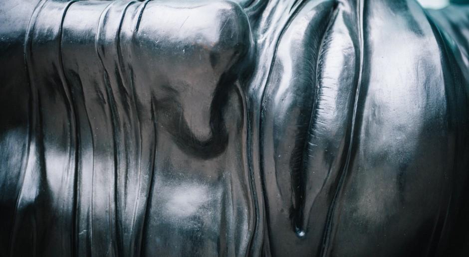 Dzieło polskiego rzeźbiarza i performera zasiliło Królikarnię