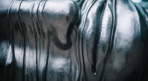 Restauracji rzeźb w ogrodach Pałacu Branickich ciąg dalszy