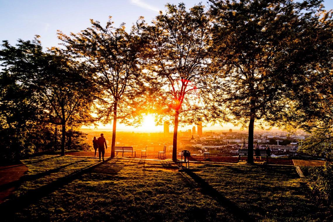 Park Skaryszewski odnowi swoją zieleń