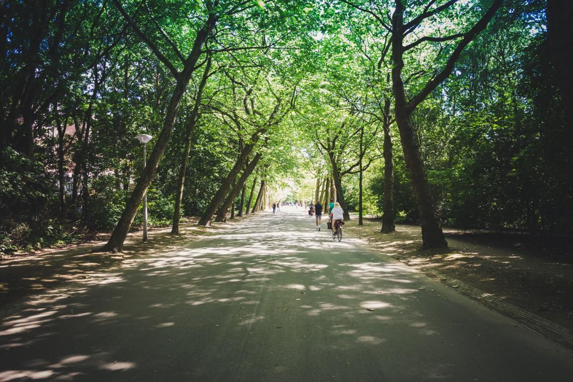 Warszawa zakłada... kompostowniki w parkach