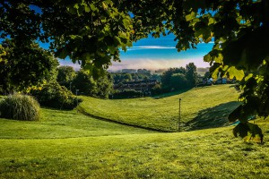Poznań nie godzi się na zabudowę w klinie zieleni