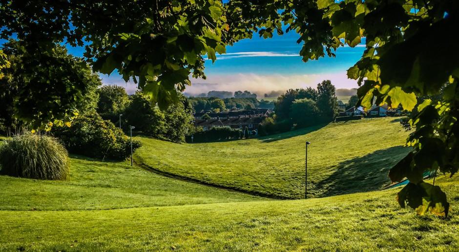 Kraków: jeden procent z budżetu miasta na nowe parki i tereny zieleni