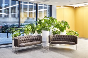 Rozstrzygnięto konkurs na aranżację zieleni w recepcjach biurowca Astoria
