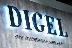 Arkadia z unikalnym salonem Digel