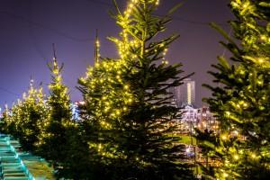 Centrum Marszałkowska rozbłysło świątecznym blaskiem