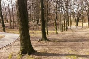 Park do rekreacji i sportu. Z myślą o najmłodszych i nieco starszych