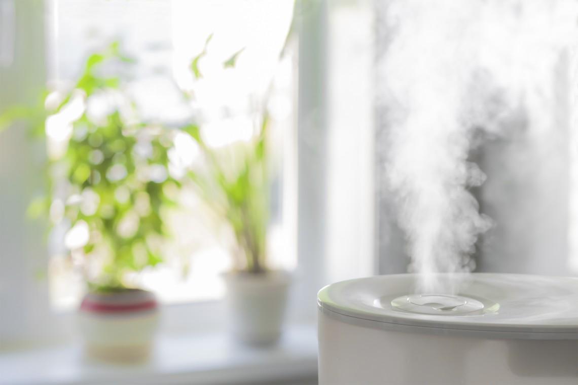 Jak nawilżyć powietrze we wnętrzach?