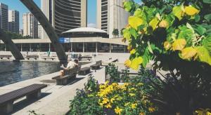 Człowiek i miasto - jak dobrze zaprojektować przestrzeń publiczną?