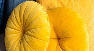 Energetyczny miraż kolorów, czyli indygo z musztardowym