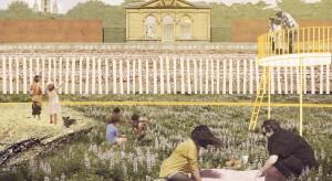 Pomysł na parki kieszonkowe