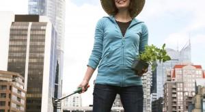 Amerykańska rewolucja w projektowaniu ogrodów