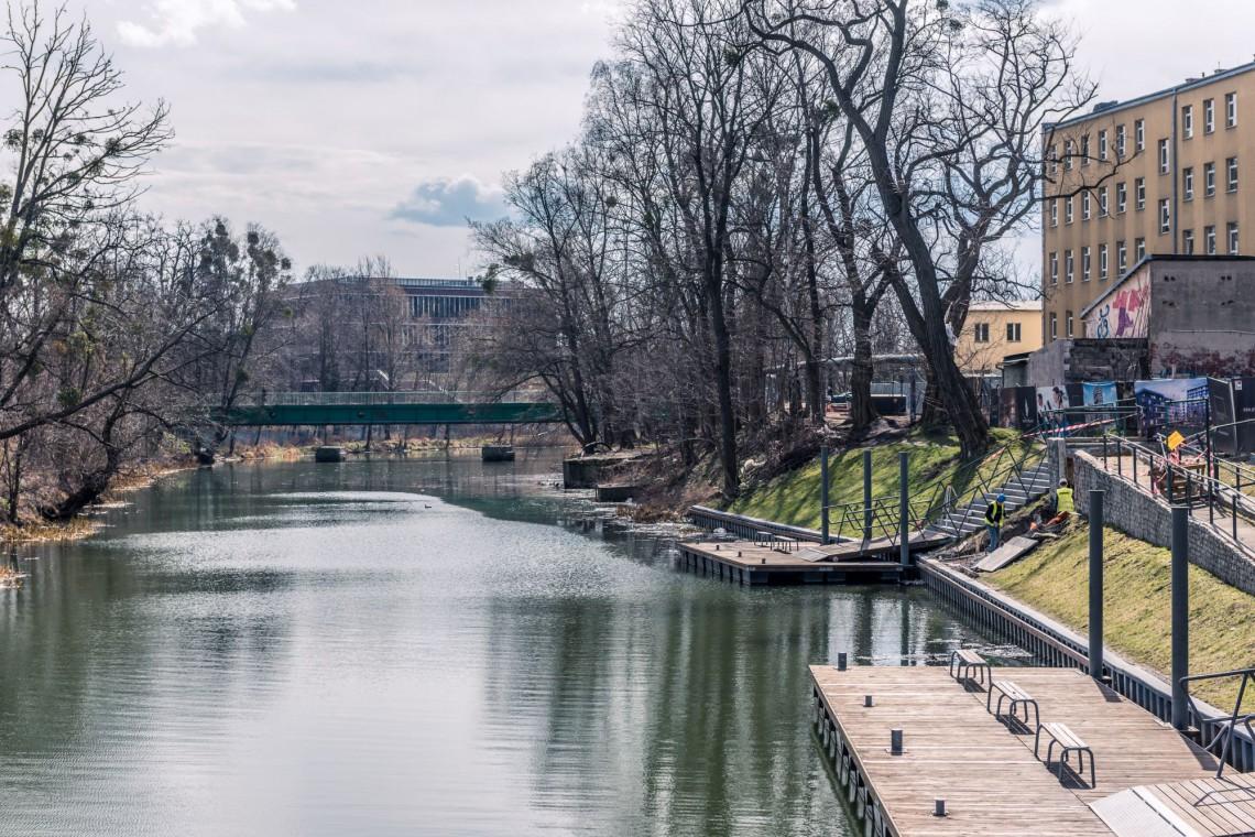 Powstaje zielona oaza w centrum Wroclawia