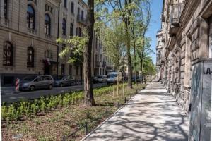 Drzewa, ławki, stojaki rowerowe, stylizowane latarnie i krzewy - tak zmienia się Łódź
