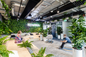 Tu zieleń wylewa się na korytarze. Oto niezwykła przestrzeń Skanska szkicu Workplace i Florabo