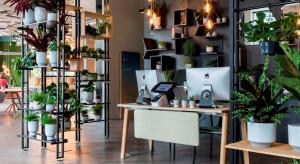 Jak stworzyć dobre biuro?