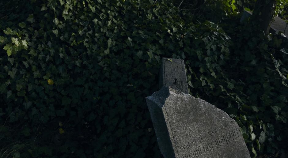 W miejscu dawnego cmentarza powstanie niezwykła instalacja