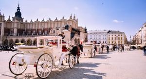 Budżet obywatelski Krakowa: ponad 500 projektów z pozytywną oceną