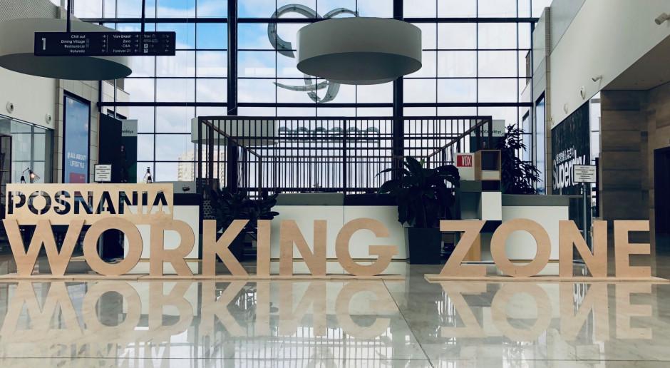 Posnania Working Zone po nowemu. To projekt Hmielik