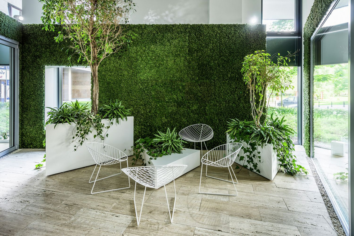 Minimalizm i zieleń w służbie prezentacji produktu. Niezwykły showroom szkicu pracowni exexe