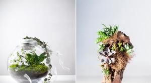 Biophilic design: wpuść przyrodę do wnętrza