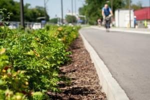 Nowe chodniki i zieleń - kompleksowo zmieniają ulice Warszawy