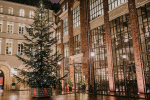 Świąteczna podróż choinki na Plac Bankowy 1 w Warszawie
