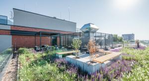 Trendy w architekturze, które warto obserwować w 2019 roku