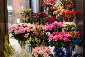 Kwiatowa euforia w Manufakturze