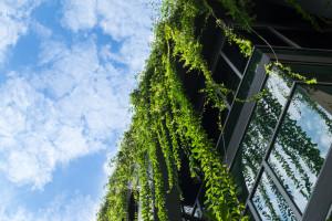 Gminy z powiatu myślenickiego w programie Czyste Powietrze