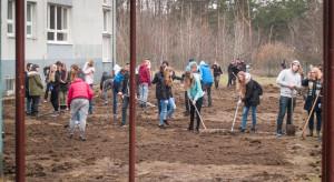 Pomysł na łąkę kwietną. Niecodzienny projekt nauczycieli i uczniów