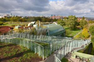 Zielone dachy w Polsce. To trend jeszcze nowy, ale z ogromnym potencjałem