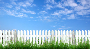 Czym są ogrody deszczowe i czy warto zakładać ogródki społecznościowe?