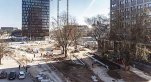 Nowy wygląd i więcej zieleni. Łódź kończy przebudowę ul. Traugutta