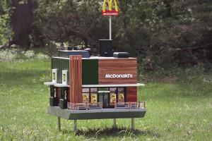 W Szwecji powstał najmniejszy na świecie McDonald's. Jego goście to... pszczoły