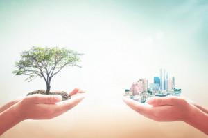 Rozpoczyna działalność Rada ds. ekoMałopolski -  na rzecz ochrony środowiska