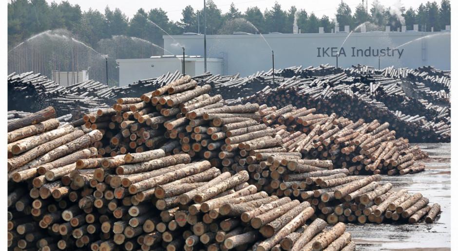 Nowa inwestycja IKEA Industry: produkcja zielonej energii
