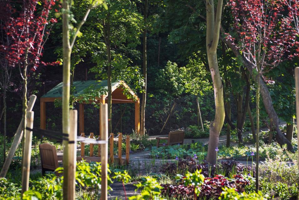Królestwo hygge, murali i przytulnej zieleni według Roark Studio i Ideamo